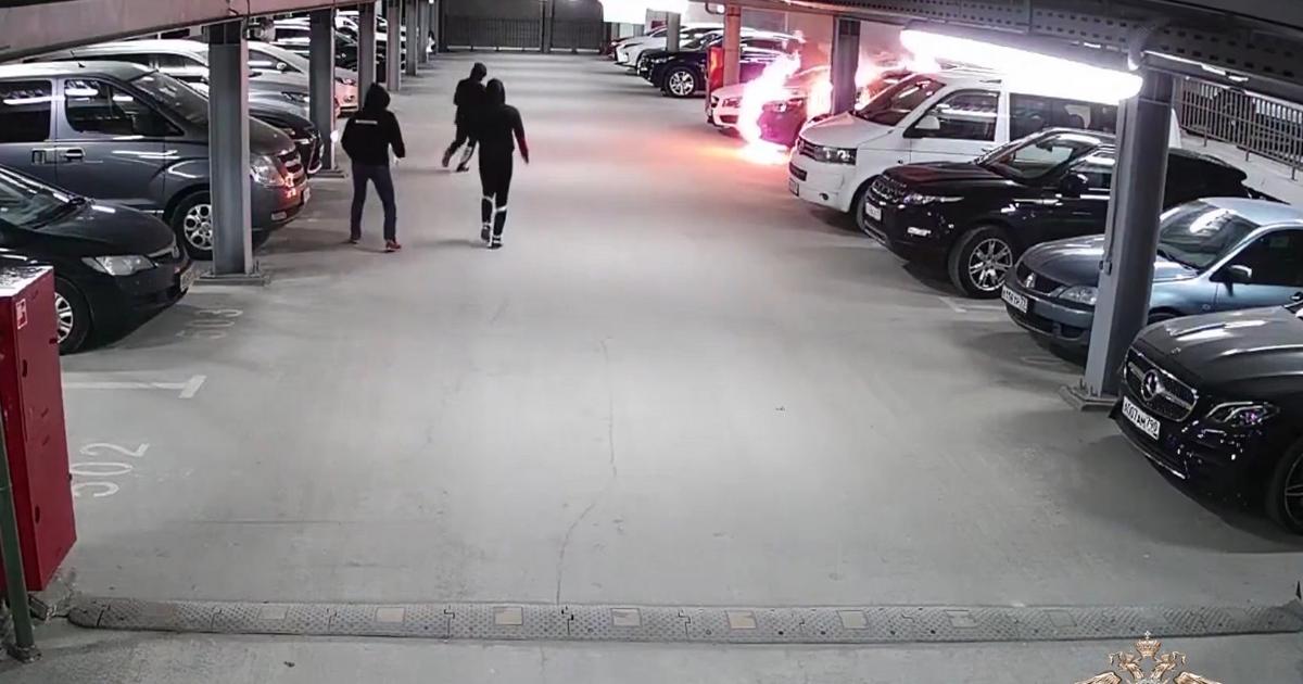 В Подмосковье сожгли машины на 13 млн рублей по заказу в интернете - автоновости