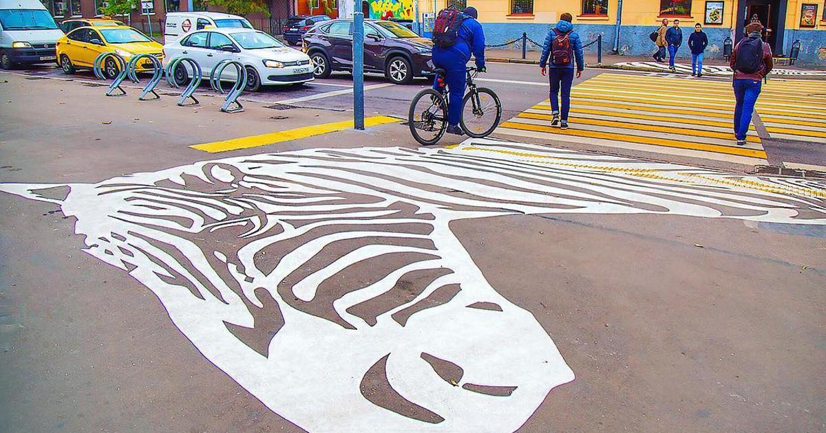 Сам на асфальте зебры рисовал